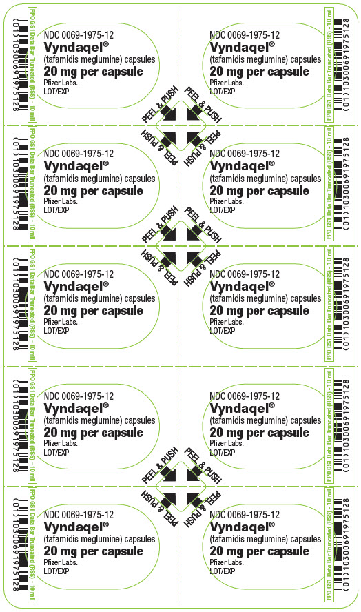 PRINCIPAL DISPLAY PANEL - 20 mg Capsule Blister Card